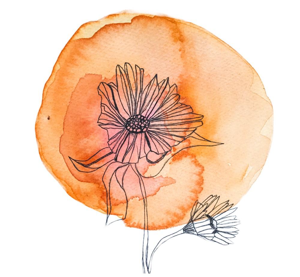 medium resolution of chakra flower wisdom cards