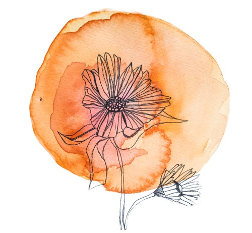 small resolution of chakra flower wisdom cards