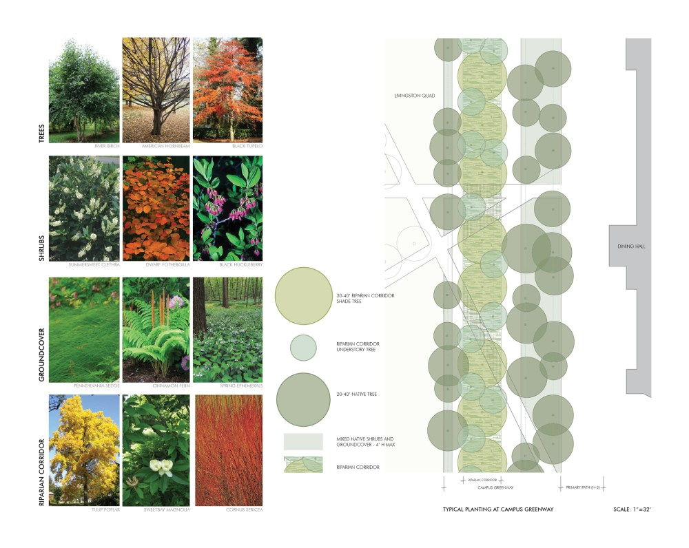 medium resolution of rutgers university livingston campus open space design guidelines