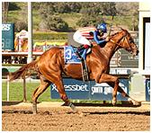 Dortmund wins San Felipe Stakes