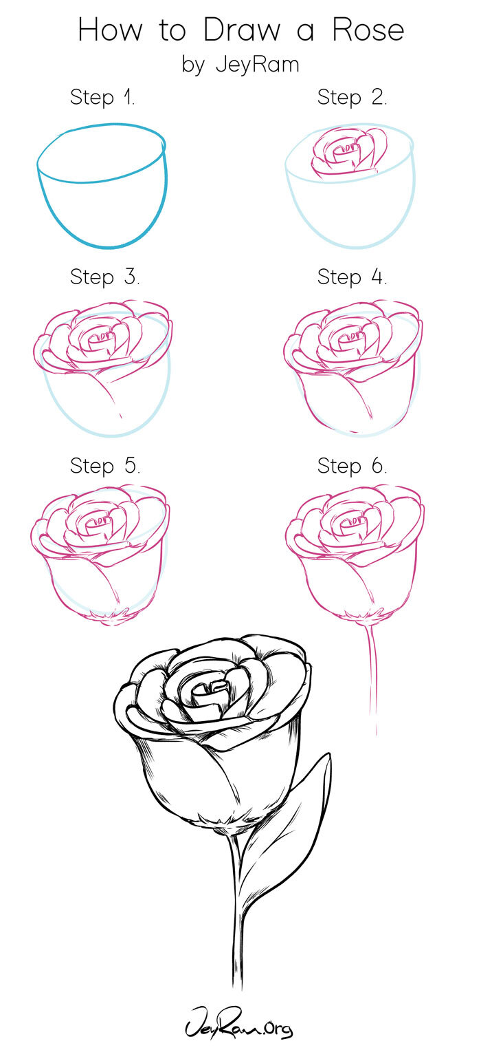 Pictures Of Roses To Draw : pictures, roses, Roses:, Tutorial, Worksheet, (Printable, JeyRam
