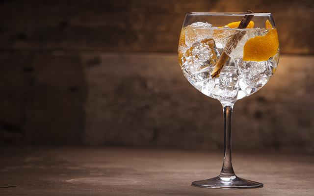 gin tonic portocale și scorțișoară