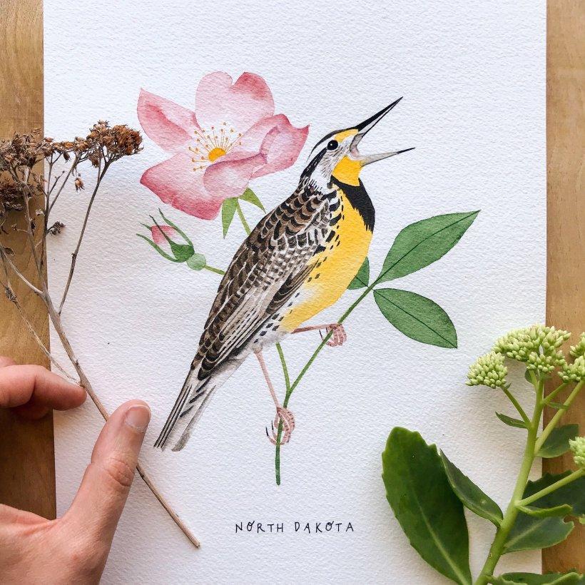 North Dakota Flower And Bird | Best Flower Site