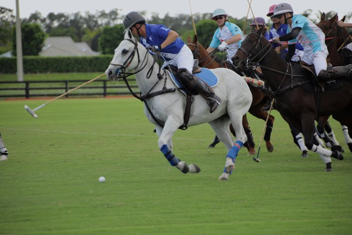 Gene Goldstein of Newport drives downfield ahead of the chase pack.    Photos by Grand Champions Polo Club