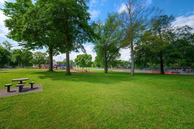 5 City of Auburn y-field.JPG