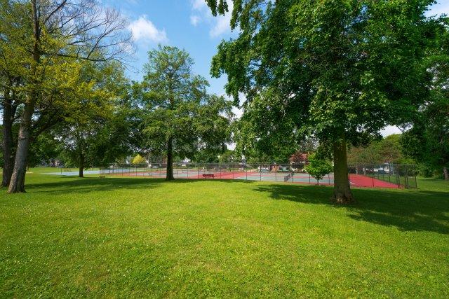 6 City of Auburn y-field.JPG