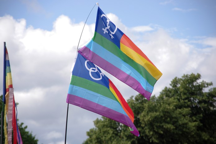 The bisexual flag, pictured above,was created by Michael Page, a co-founder of Bisexual Awareness Week. (Matt Buck/Flickr)