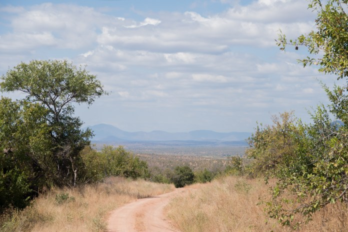 A view from the top of a hill in Ruaha National Park. The mountains in the background are characteristic of the surrounding Iringa region. (Amar Batra/Daily Campus)