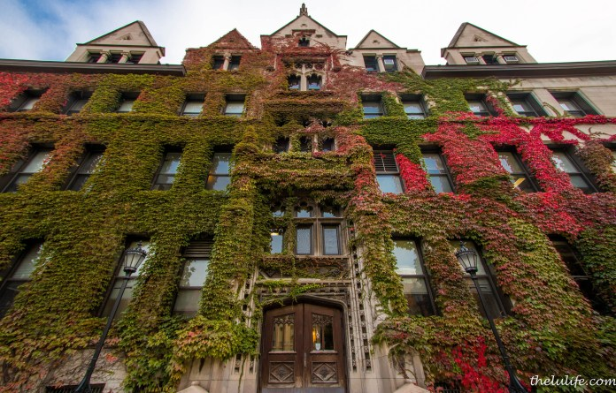 """The University of Chicago was the focus of media coverage after a letter released by the dean of students warned against claiming """"safe spaces"""" to undermine adversity.(Flickr/luyaozers)"""