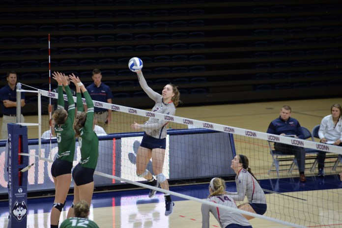 UConn volleyball in the Dog Pound Challenge on Sept. 9th, 2016. (Amar Batra/The Daily Campus)