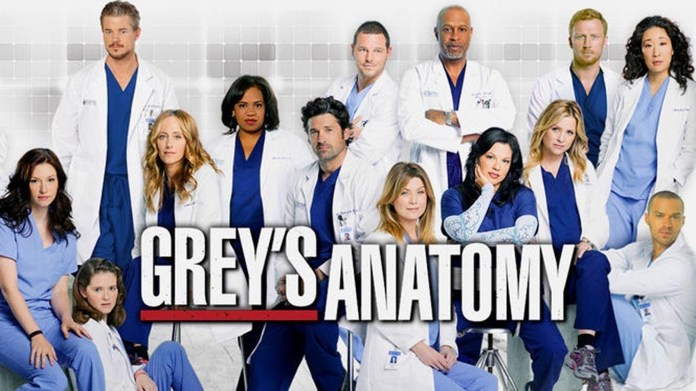 All the highlights about the season 13 premiere of Greys Anatomy which aired September 22nd at 8 p.m. on ABC. (Courtesy/Creative Commons)