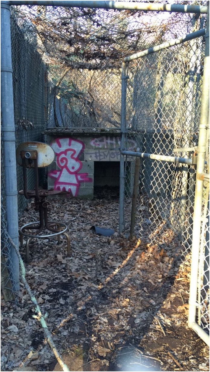 Abandoned cages from a UConn graduate student's experiments can be found tucked away in the UConn forest. (Katie Pelkey/The Daily Campus)
