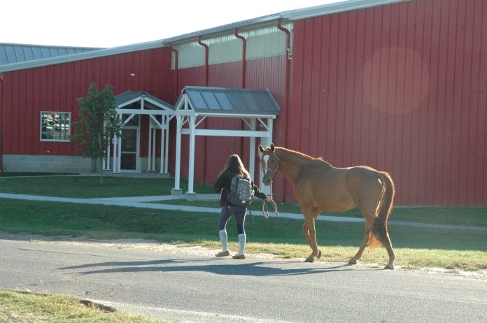 UConn Horse Barn Hill area. (File Photo/The Daily Campus)