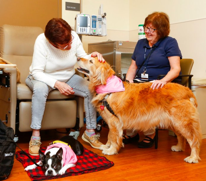 IMAGE DISTRIBUTED FOR MEGABUS.COM - In support of Breast Cancer Awareness Month, megabus.com teamed up with Pet Partners to bring therapy dogs to visit patients and hospital staff at Penn Presbyterian Medical Center on Tuesday, Oct. 16, 2018, in Philadelphia. (Mark Stehle/AP Images for megabus.com)