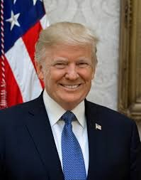 Trumps official portrait  by Shealah Craighead