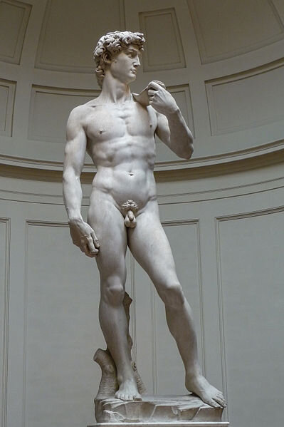 Michelangelo's David (1501-1504) in Galleria dell'Accademia in Florence.  Photo by    Jörg Bittner Unna