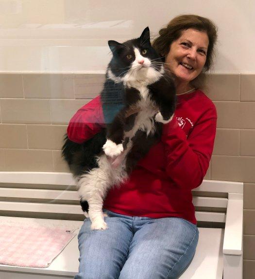 Seattle Humane Volunteer with Cat.jpg