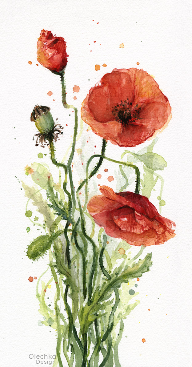 floral watercolor paintings olechka