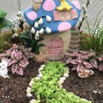 A Step By Step Guide To Making A Fairy Garden Stanley S Greenhouse