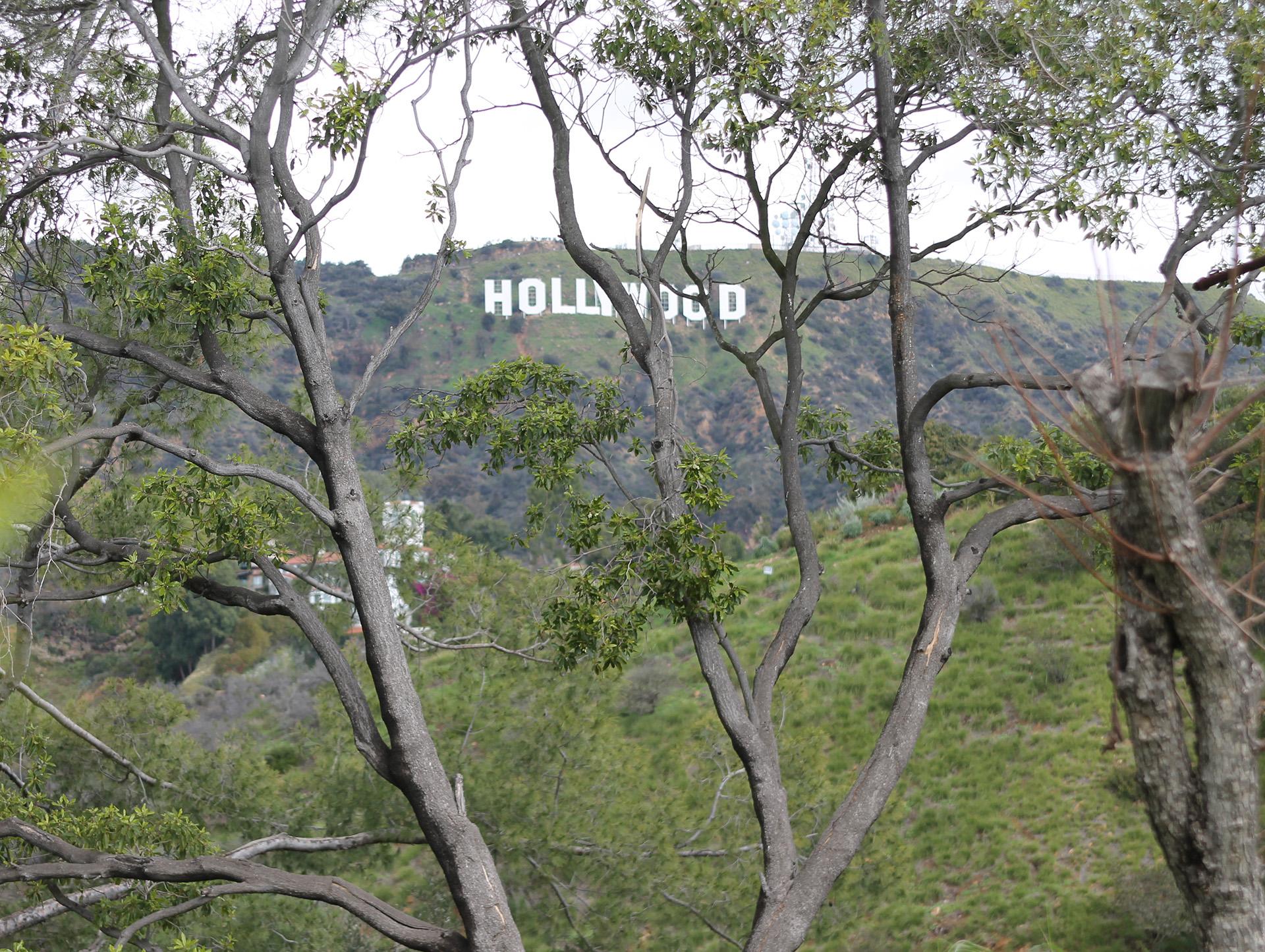 hight resolution of hollywood sign martin pierce jpg