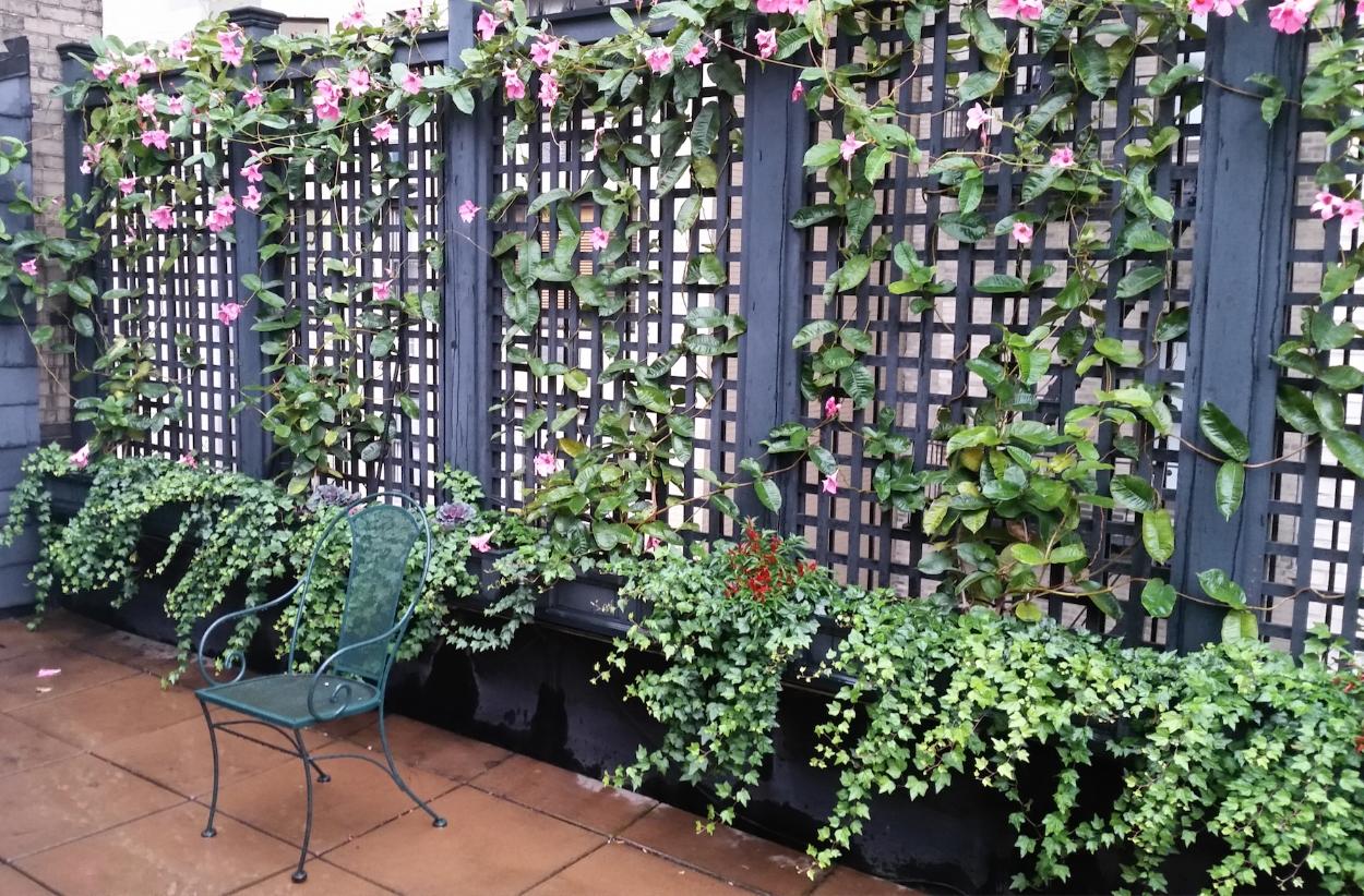 Nyc Landscape Design And Construction Drip Irrigation Outdoor Lighting Garden Design