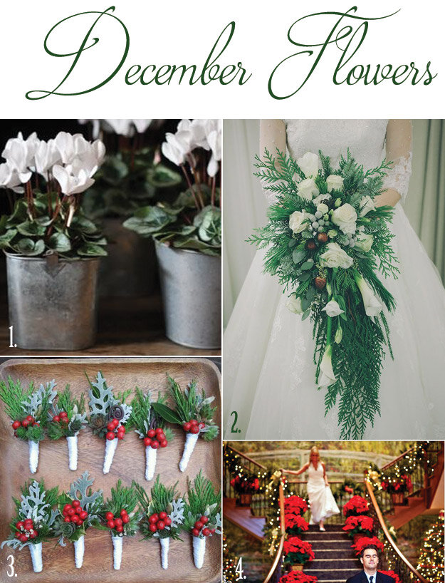 December Flowers