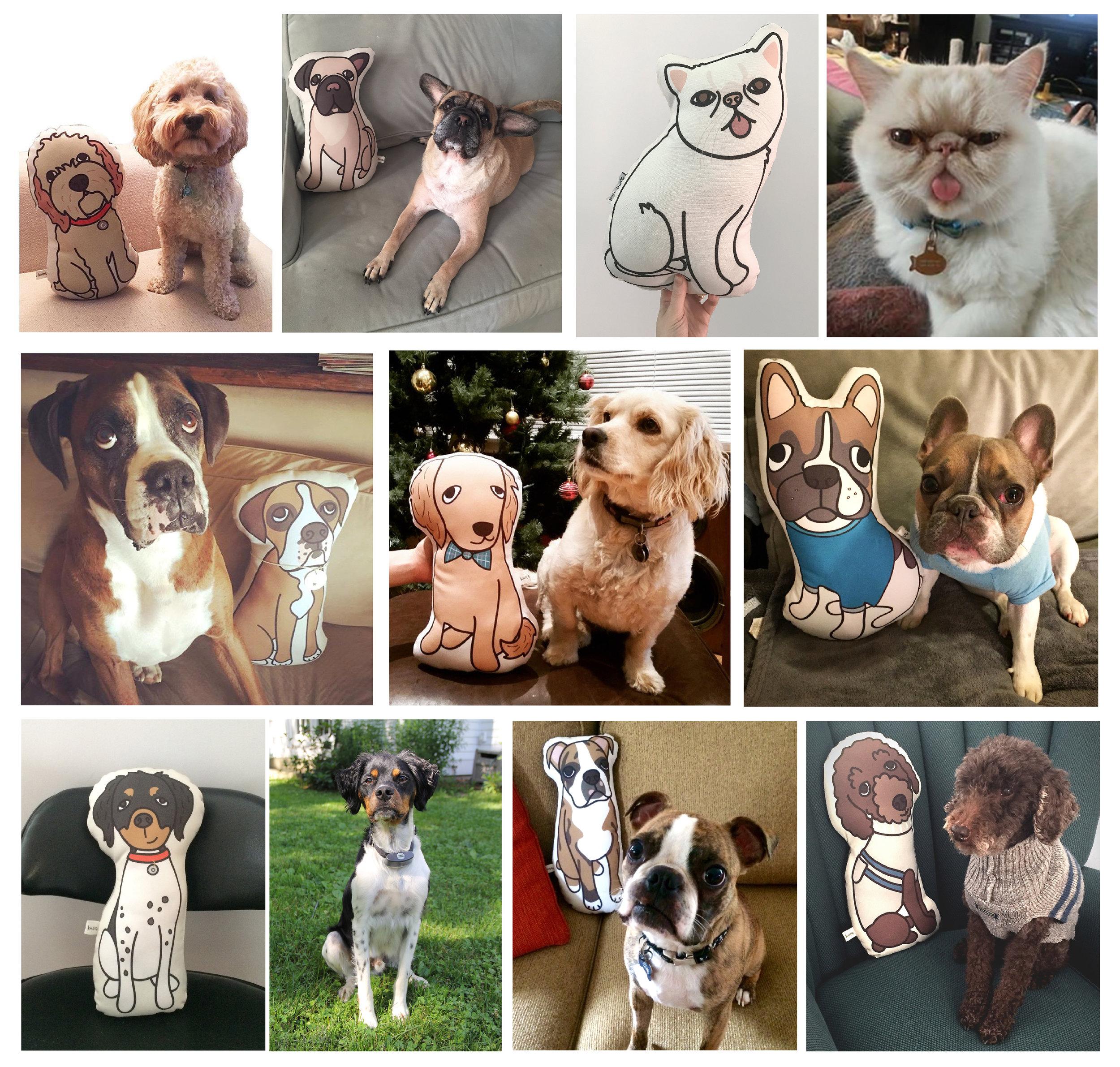 custom illustrated pet pillow kara burke illustrations