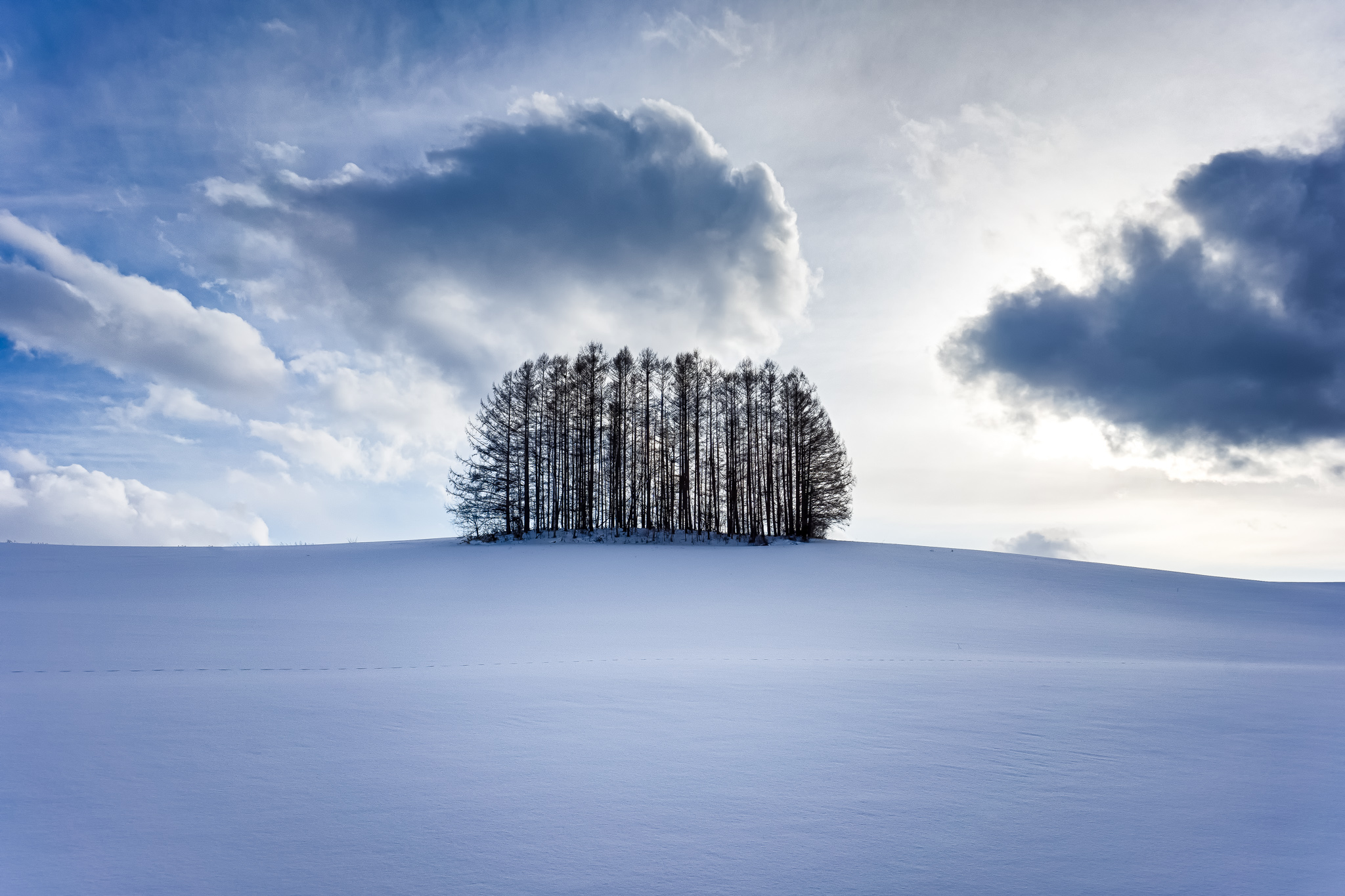 tips for snow photography