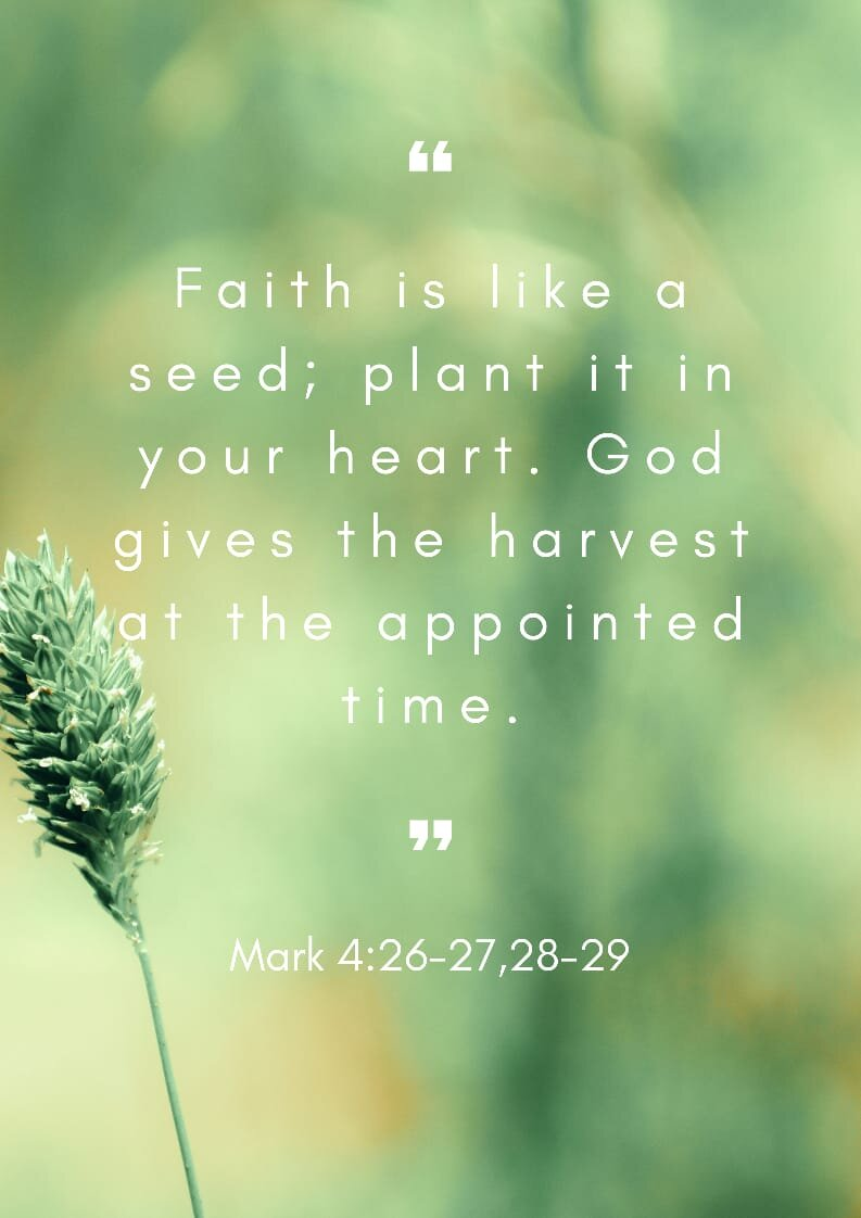 Sayings About Faith : sayings, about, faith, Faith, Quotes, Inspire, Sayings, About, Believing