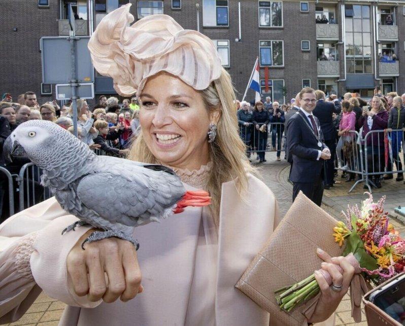 18.09.2019   Königin Maxima und Willem-Alexander besuchten heute die Provinzen Hoogeveen, Westerveld, De Wolden und Meppel in Drenthe. Dabei machte die dreifache Mutter eine tierische Bekanntschaft.  © imago images / PPE