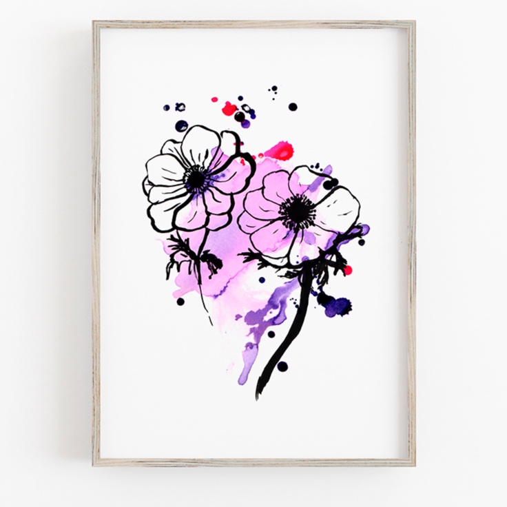 anemone flower colourful botanical