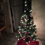 How To Decorate A Small Nyc Apartment For Christmas Marco Feng