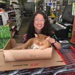 Canton Ace Hardware The Cat S Meow And More Canton Community Association