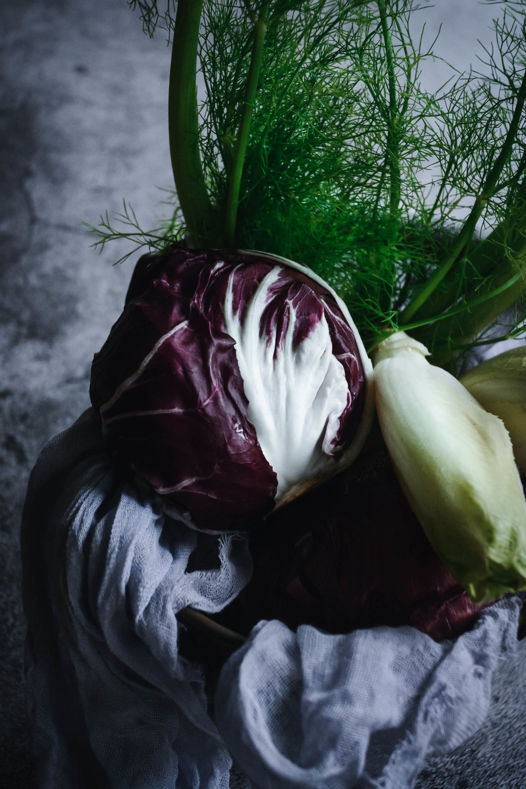 Radicchio, endive and fennel on napkin
