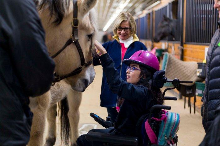 Volunteer — Equestrian Connection