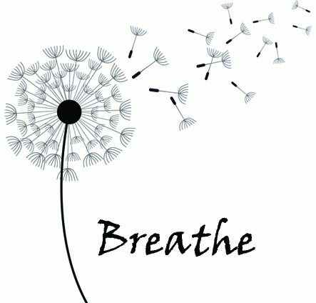Breathe-BodyandMind — Yoga South Africa