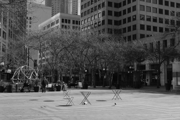 A very quiet Westlake Park, Seattle, 21 March 2020.