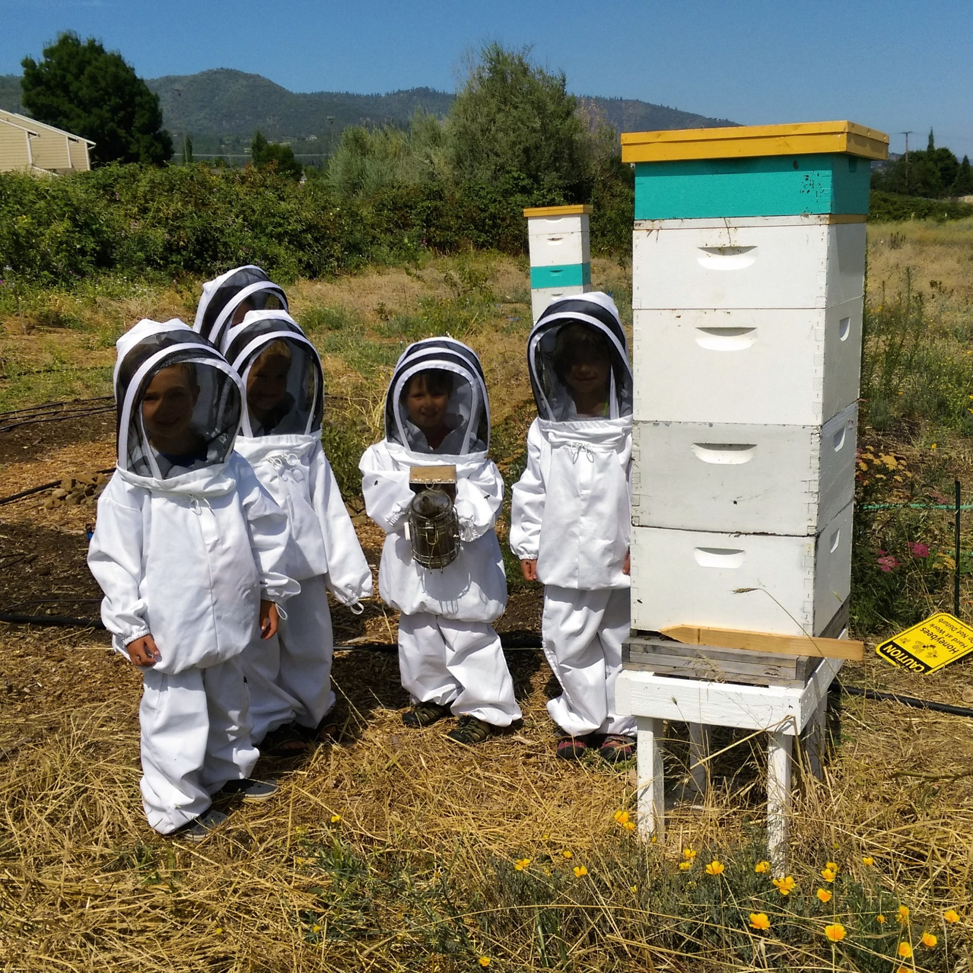 hight resolution of Kids \u0026 Bees — The Bee Girl Organization