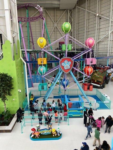 Paw Patrol Mall Of America : patrol, america, Nickelodeon, Universe, Here!, Donuts, Disco