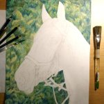 Equine Portrait Painting Process From Start To Finish Using Prismacolor Pencils Art By Jennifer Bray