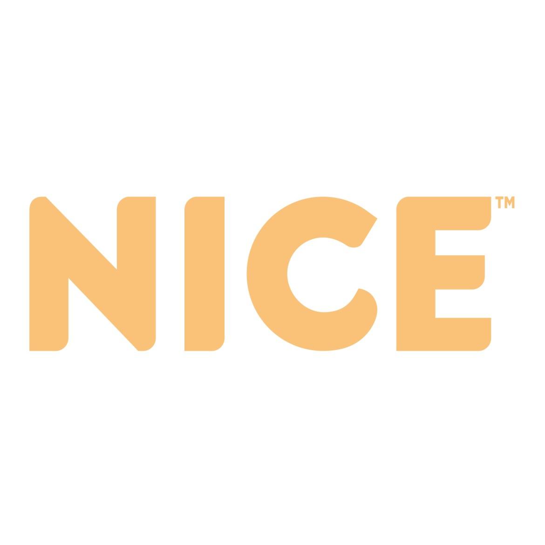 NICE2.jpg