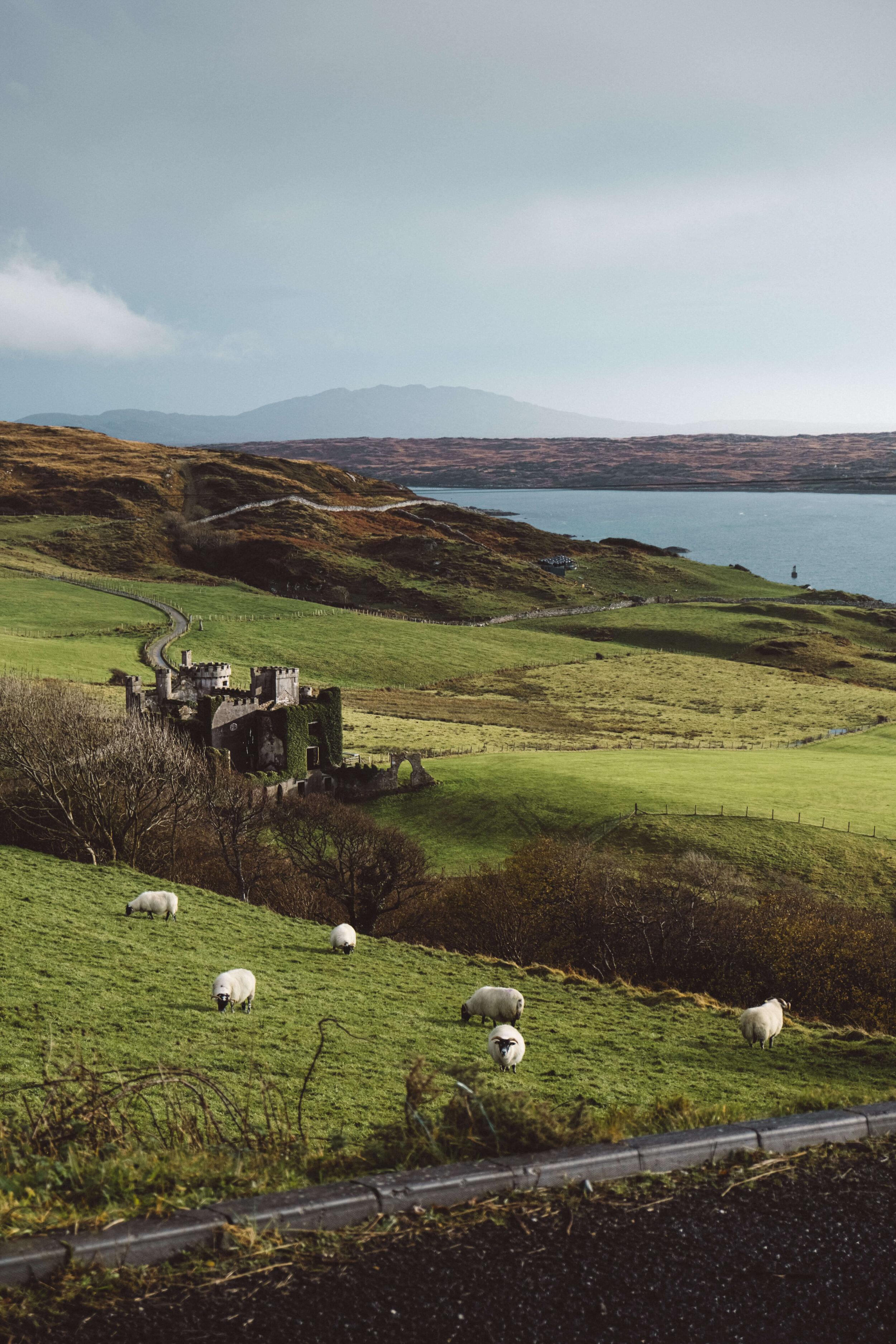 Que Faire En Irlande : faire, irlande, Faire, Irlande, Visiter, Connemara, Hors-Pistes