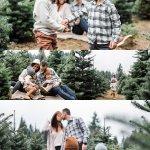 Portland Oregon Christmas Tree Farm Photos Elizabeth Hite Photography
