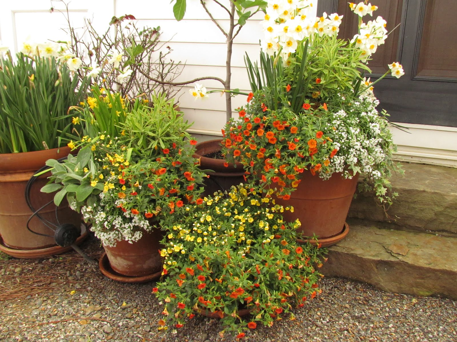 use container gardens for a lush look