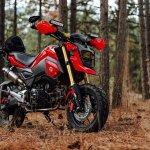 Honda Grom Adventure Bike Build Big Looks Small Bore Wanderlust Not Less Adventure Photography Nature Stickers