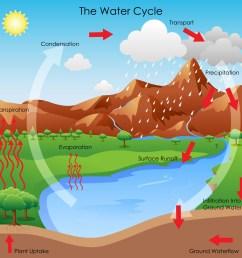 The Water Cycle — Kentucky Ready Set Grow [ 1000 x 1000 Pixel ]