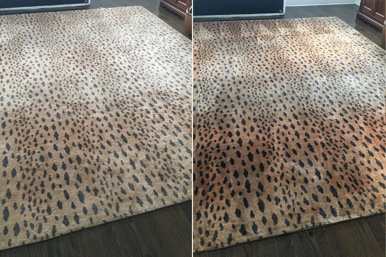 eco clean professional carpet