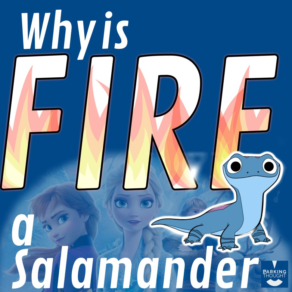 fire-salamander_.jpg