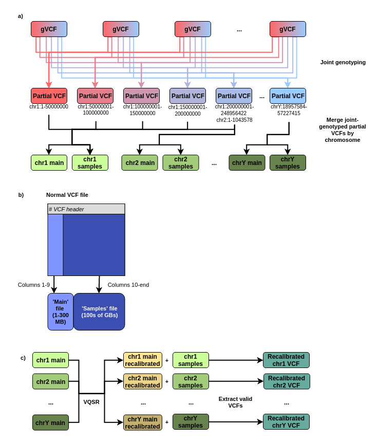 Figure 2 : Solutions for joint genotyping large cohorts using Sentieon. Compare these steps to the progression from gVCFs -> Recalibrated VCF in Figure 1. a) Parallelization of joint-calling. gVCFs are broken up by region and joint genotyping is run in parallel on small regions to produce a series of partial VCFs. Partial VCFs covering a chromosome are then merged to produce a 'main' and a 'samples' file for each chromosome. b) Structure of the 'main' and 'samples' files produced by merging joint-genotyped partial VCFs. The 'main' file is small, containing only columns 1–9 of a normal VCF file. The 'samples' file contains all sample columns (rows 10-the end of the file) — 9621 total columns in our case. c) VQSR and extraction of the final VCF files. The 'main' files from each chromosome are merged and VQSR is performed. The recalibrated VCF is split by chromosome to generate 'recalibrated main' files, which are combined with the 'samples' files for each chromosome to produce a single full recalibrated VCF file for each chromosome.