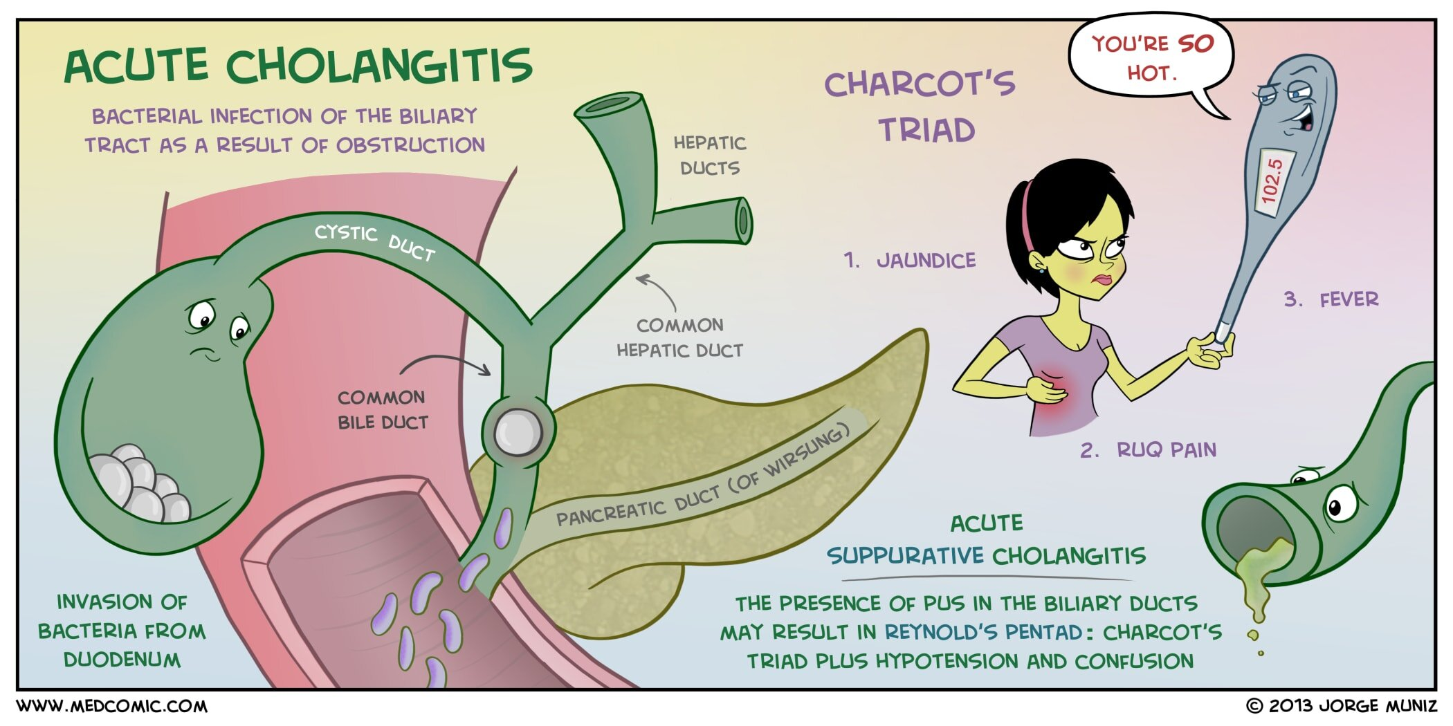 Acute Cholangitis — Medcomic